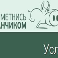 Метнись Кабанчиком - онлайн-серв